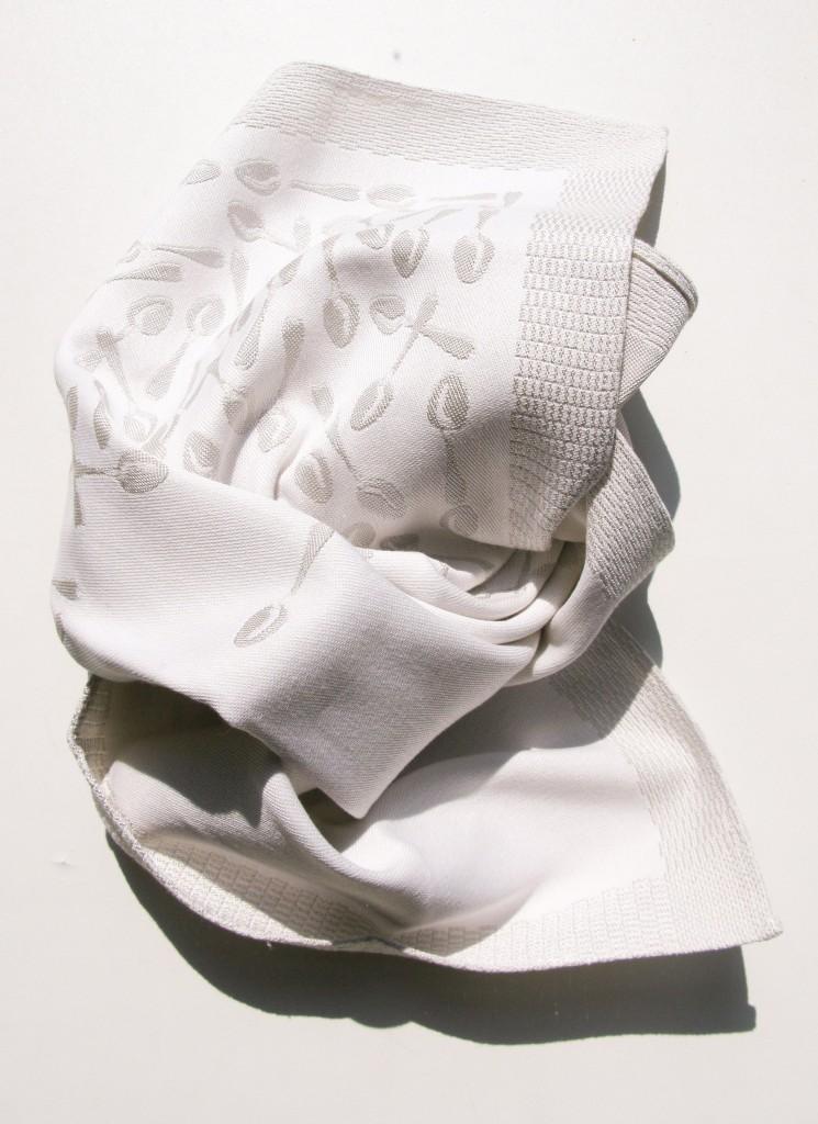napkin2
