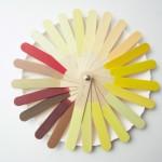 kleurenwaaier-3